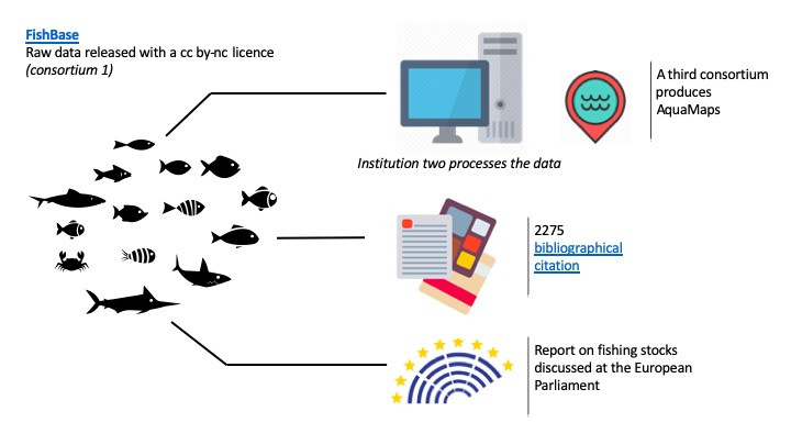 In the illustration, some reuse cases resulting from the FishBase data: a new application, a long series of scientific analysis, and a report that has been discussed at the European Parliament.