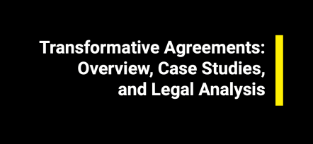 """Transformative Agreements: Overview, Case Studies, and Legal Analysis"" – Open Science Platform report"