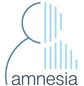 AMNESIA: Data anonymization made easy